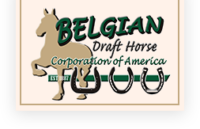 Belgian Draft Horse Corporation